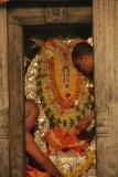 Jathra Mahotsav (2)