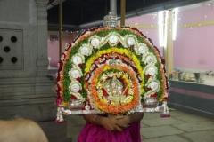 Jathra Mahotsav (3)