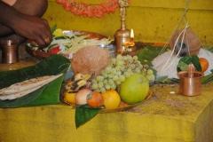 Nagapratishta